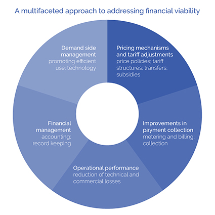 A multifaceted approach to addressing financial viability