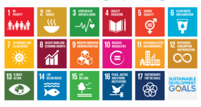Staying on track with the Sustainable Development Goals – What evaluation can teach us