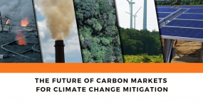 The Future of Carbon Markets for Climate Change Mitigation
