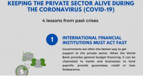 Keeping the Private Sector Alive During the Coronavirus (COVID-19): 5 lessons from past crises