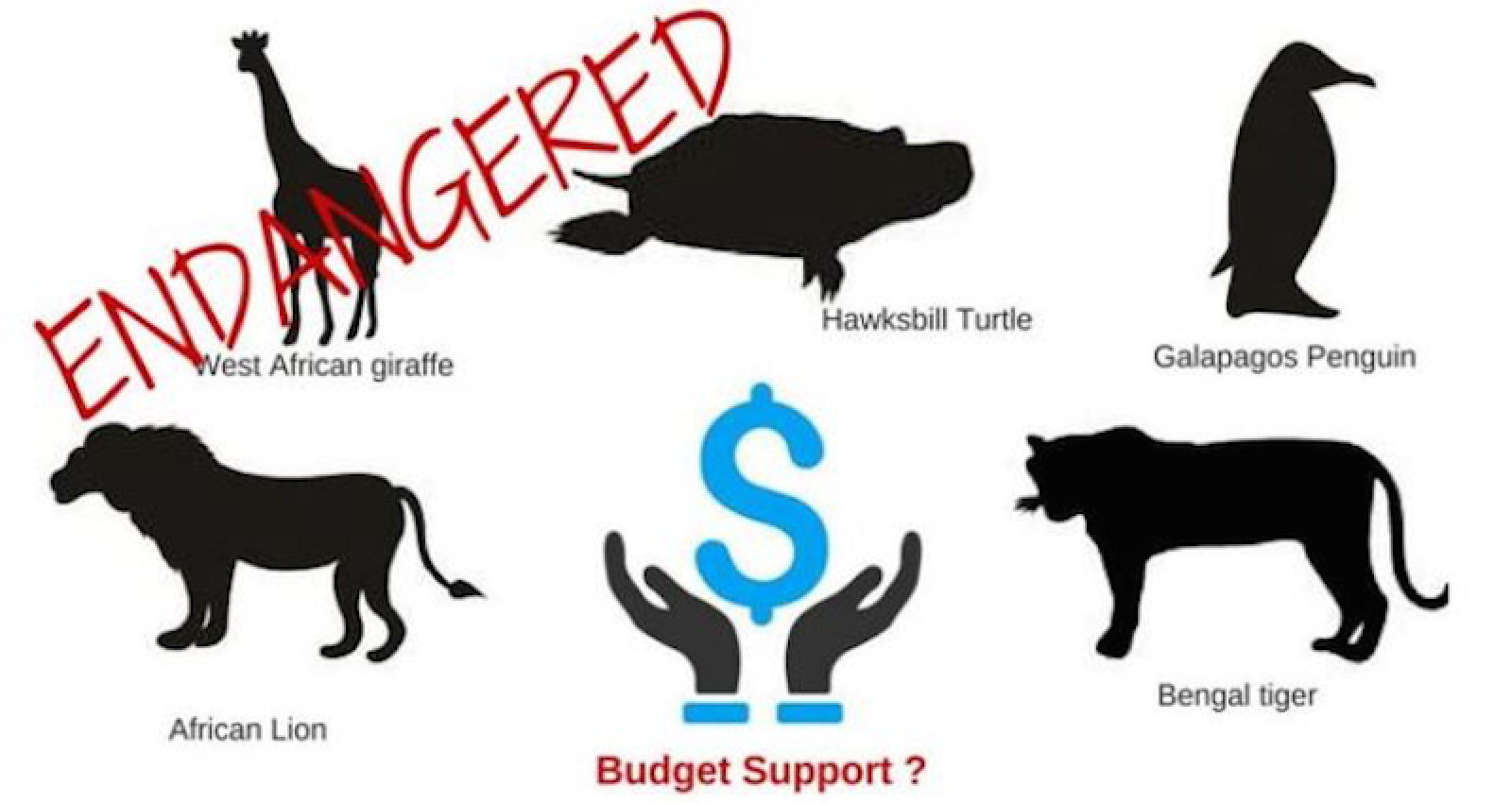 Is Budget Support an Endangered Species?