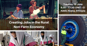 Creating Jobs in the Rural Non Farm Economy