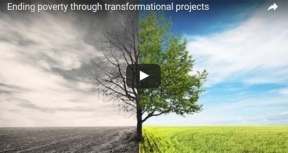 VIDEO: Assessment of Transformational Engagements